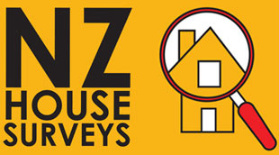 NZ House Surveys